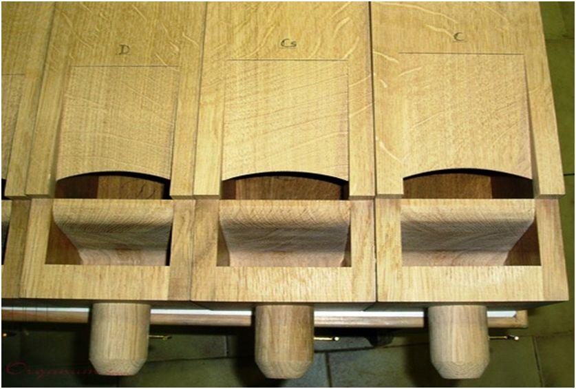 canne-in-legno-6